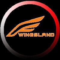 کوادکوپتر Wingsland